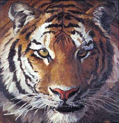 tigerface