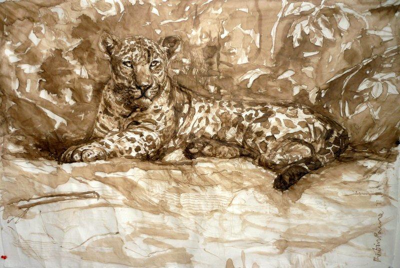 Jaguar of the Pantanal
