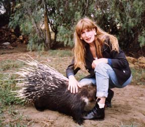 In Kenya with a porcupine